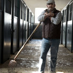 Carlos Colado Carmona working in the stables