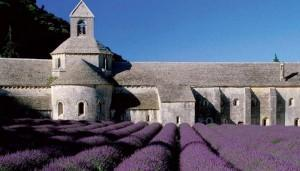 Abbey of Senanque in Provence